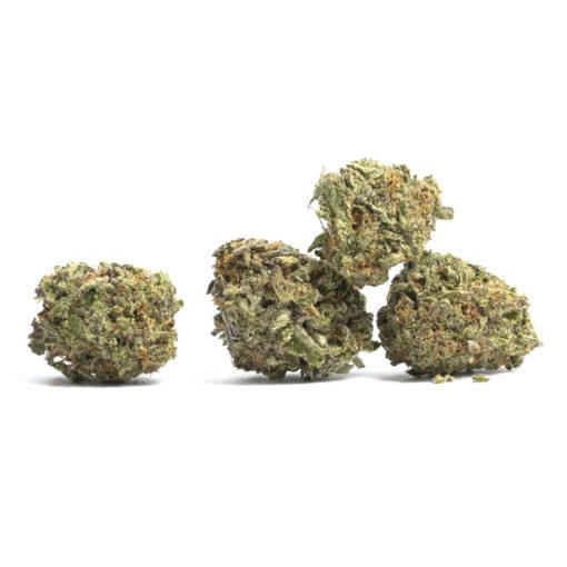 Buy God's Gift marijuana strain | buy God's Gift Marijuana Strain online | buy God's Gift Marijuana Strain Texas | buy God's Gift Marijuana Strain Arizona |