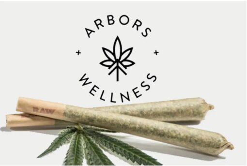MED Pre Roll 4pack - Monkey Mints 17.8% - Arbors Wellness