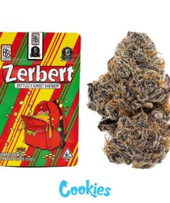Zerbert Strain Backpackboyz | Buy Zerbert Strain | zerbert | zerberts | zerbert strain