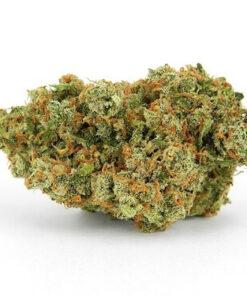 buy snowcone strain | snowcone strain | snow cone | snow cone og | snow cone kush
